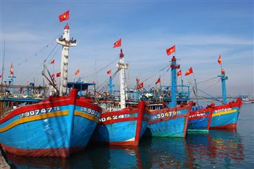 Bình Định's Progress In Combating IUU Fishing